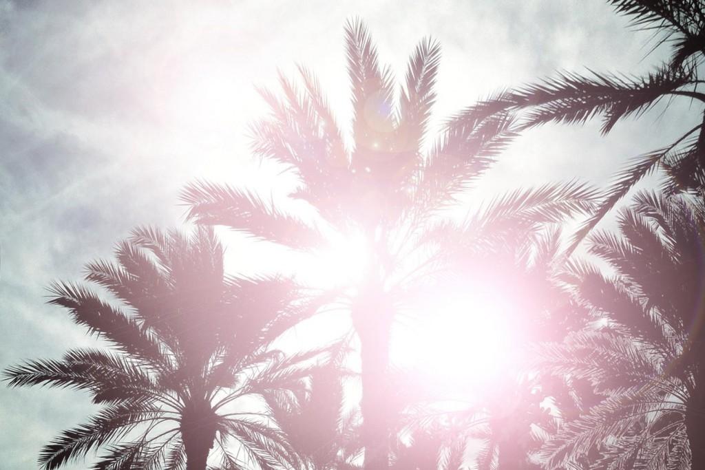 頭皮の日焼け2_3
